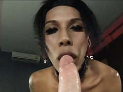 Ladyboy Bee Gives A Blowjob plus Gets..