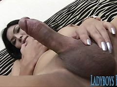 Asian Ladyboy Exclusively Vilification